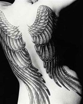 Quiero Volar.....