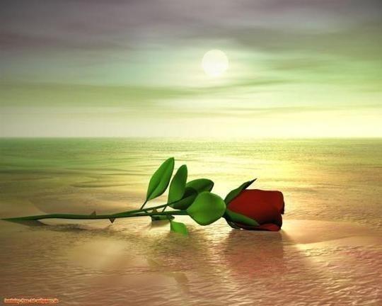 El Amor y el Egoismo